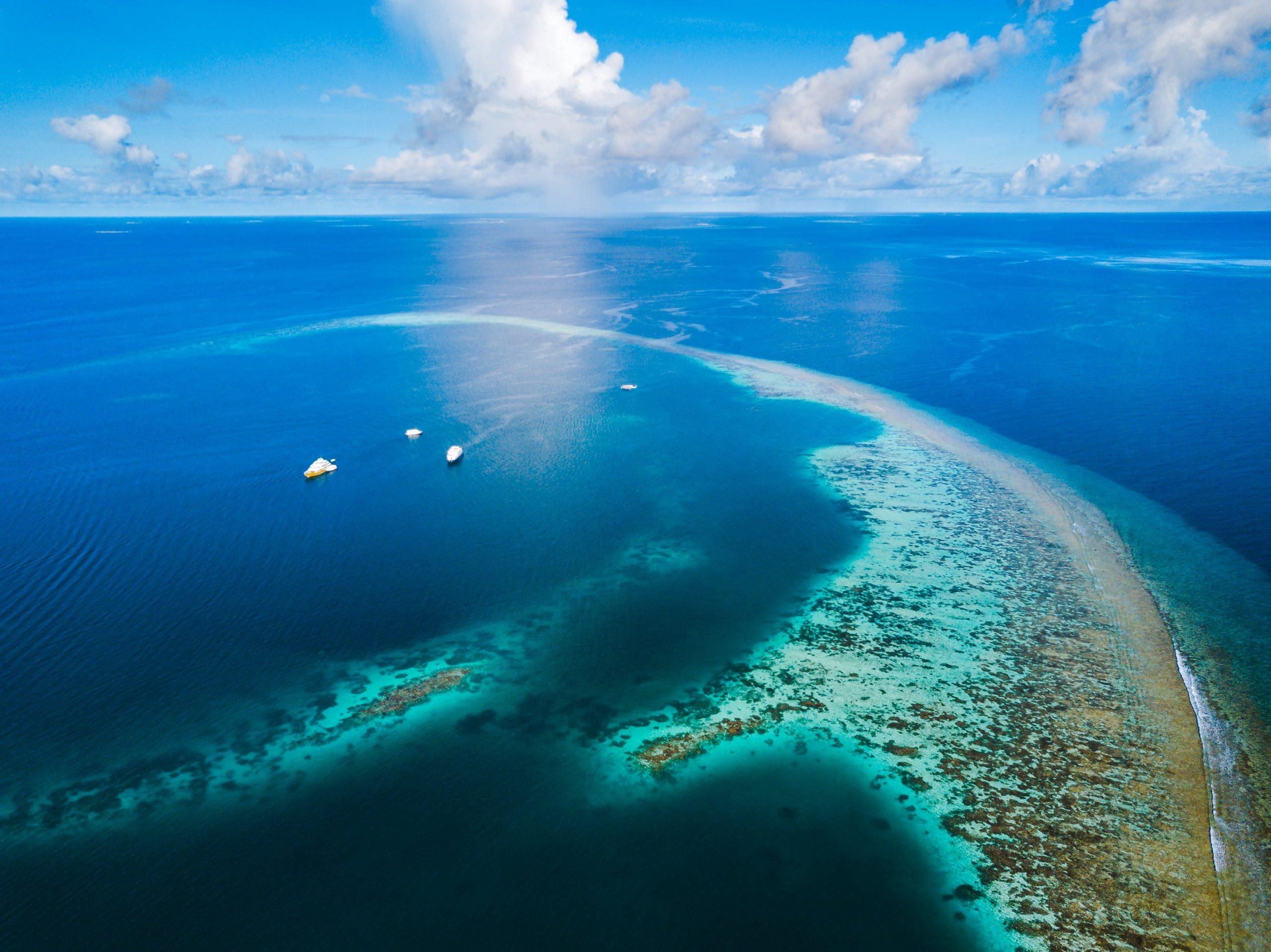Croisière plongée aux Maldives avec la flotte de Seafari