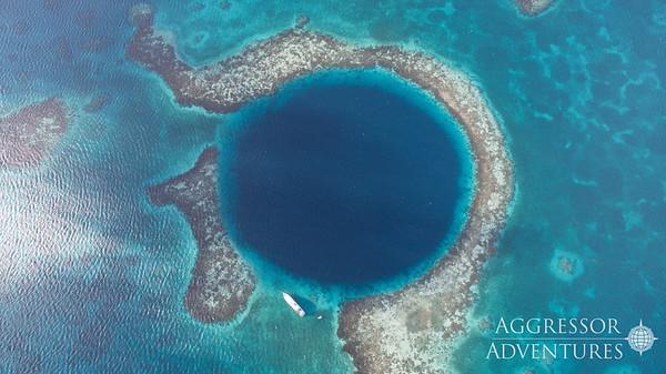 Croisière plongée au Belize à bord des Belize Aggressor III et IV