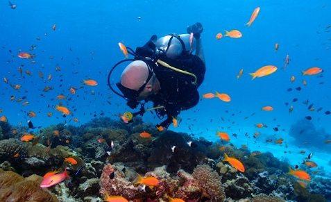 Séjour plongée à Zanzibar à Matemwe au Sunshine Marine Lodge