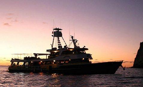Croisière plongée au Mexique, à Guadalupe à bord du Solmar V