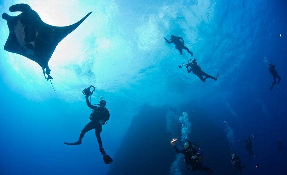 Croisière plongée au Mexique, côté Pacifique, à Socorro à bord du Solmar V