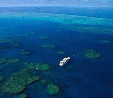 Nos croisières plongée en Oceanie et dans le Pacifique