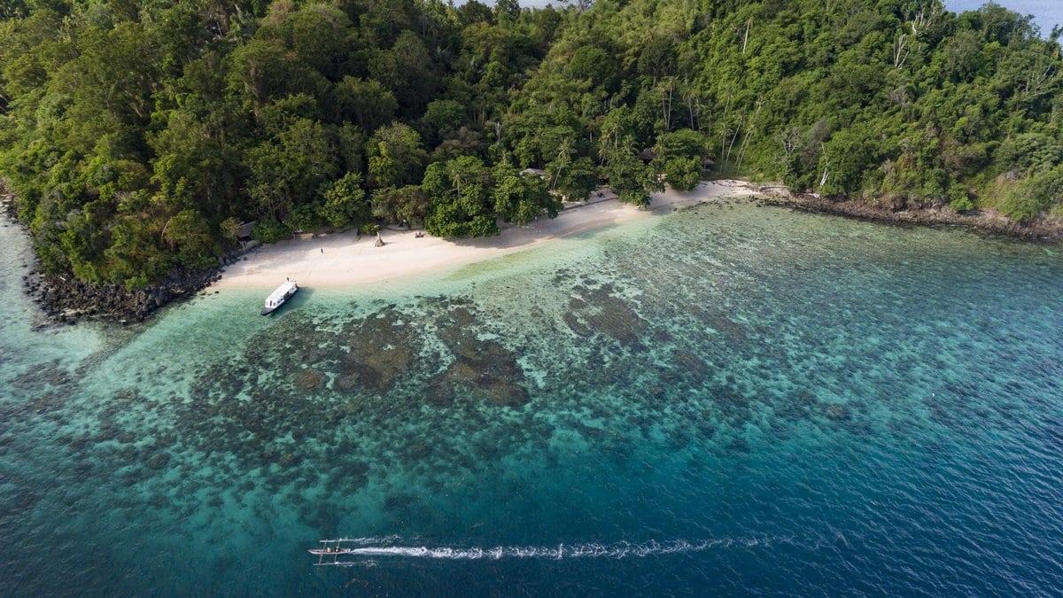 Séjour plongée en Indonésie, de Bunaken à Bangka, au Murex Resort