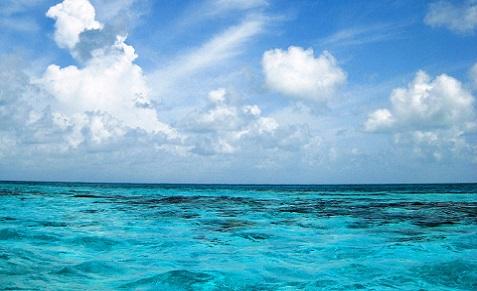Séjour plongée au Belize, avec Hamanasi Adventure and Dive Resort